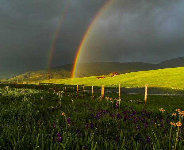 Photograph - Double Rainbow by Kevin  Dietrich