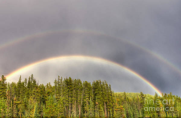 Photograph - Double Rainbow by Wanda Krack