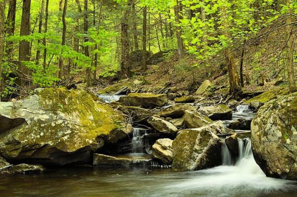Sullivan County Photograph - Double Run #2 - Worlds End State Park by Joel E Blyler