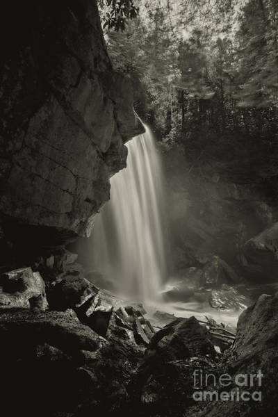 Photograph - Douglas Falls On North Fork River Near Thomas Wv by Dan Friend