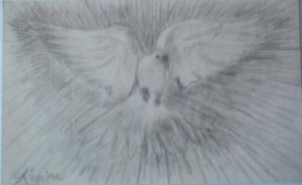 Drawing - Dove Of Peace by Regina Taormino
