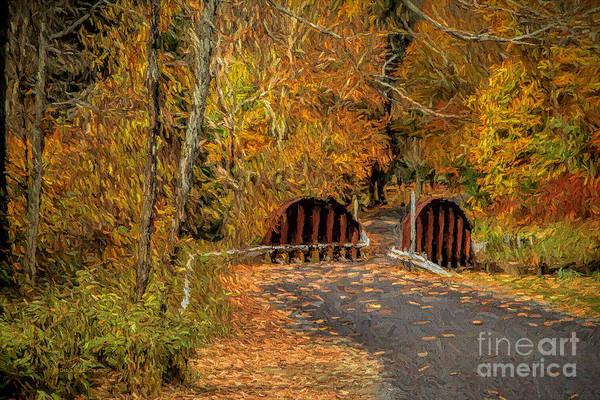 Photograph - Down The Path Of Color by Deborah Benoit
