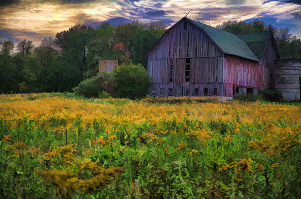 Cass Wall Art - Photograph - Down On The Farm II by John Crothers