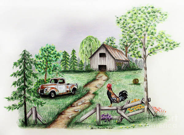 Wall Art - Drawing - Down On The Farm by Lena Auxier