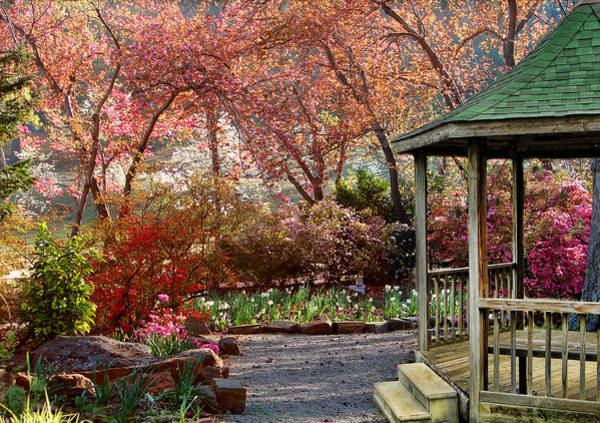 Honor Heights Park Photograph - Down The Garden Path by Carolyn Fletcher