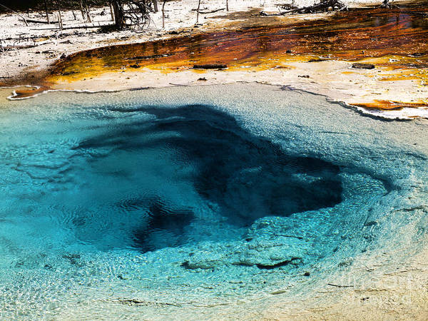Photograph - Down To The Earth's Core by Brenda Kean