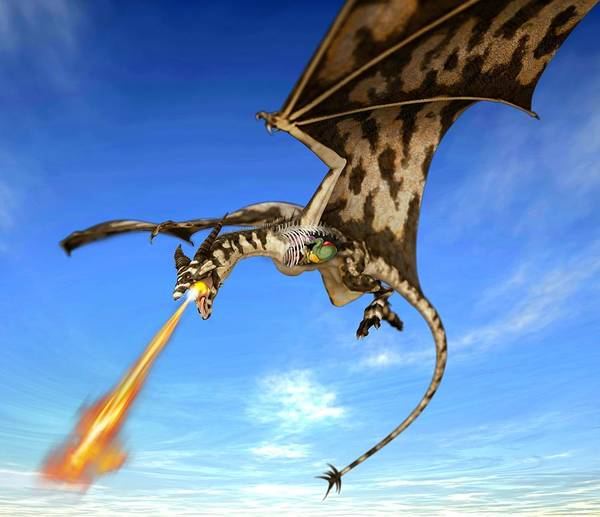 Flammable Wall Art - Photograph - Dragon Anatomy, Artwork by Science Photo Library
