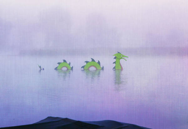 Photograph - Dragon In The Mist by Tom Singleton