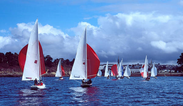 Dragon Boats Wall Art - Photograph - Dragon Regatta In Baie De Douarnenez by Panoramic Images