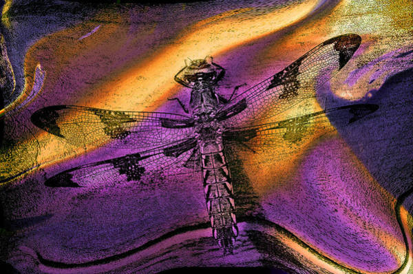 Photograph - Dragon Tapestry... by Arthur Miller