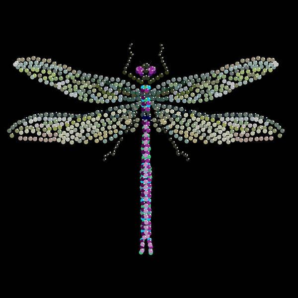 Digital Art - Dragonfly Bedazzled by R  Allen Swezey