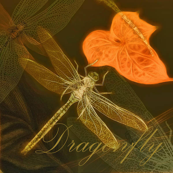 Painting - Dragonfly by Douglas MooreZart