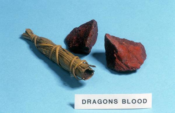 Pharmaceutical Wall Art - Photograph - Dragon's Blood Sample by Science Photo Library