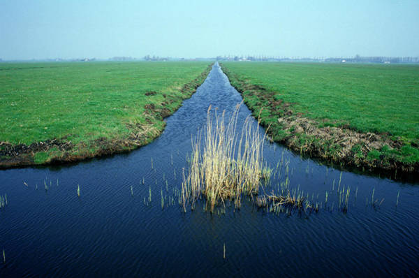 Wall Art - Photograph - Drainage Channel by Ton Kinsbergen/science Photo Library