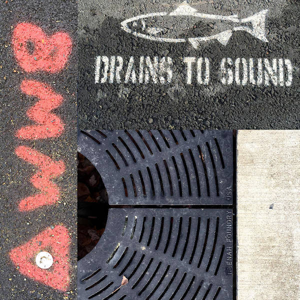 Wall Art - Photograph - Drains To Sound by Nancy Merkle