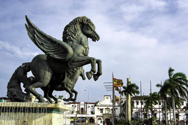 Cartagena Photograph - Dramatic And Inspiring Equine by Jerry Ginsberg
