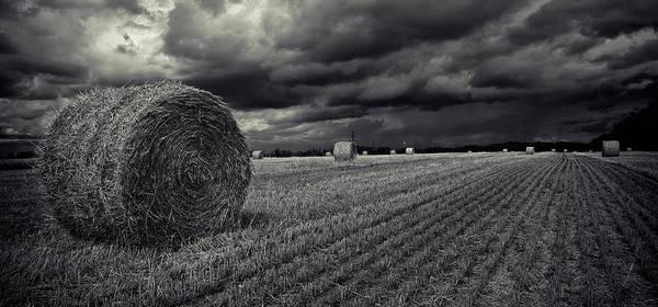 Photograph - Dramatic Presentation Of A Field Around by Roland Shainidze Photogaphy