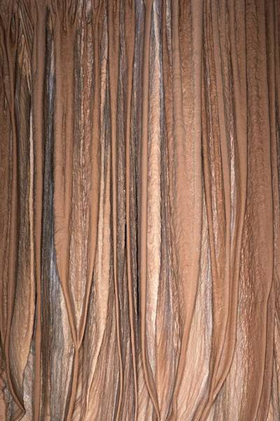 Stalagmite Photograph - Drapery Flowstone by David Parker