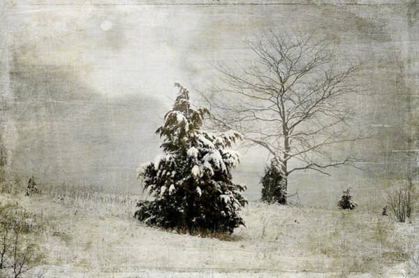 Photograph - Dread Of Winter by Julie Palencia