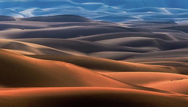 Wall Art - Photograph - Dream Desert by Mohammad Shefaa