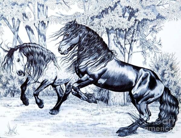 Friesian Drawing - Dream Horse Series #211 - Frolick In The Back Pasture by Cheryl Poland