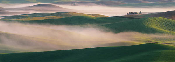Wall Art - Photograph - Dream Land In Morning Mist-2 by ??? / Austin
