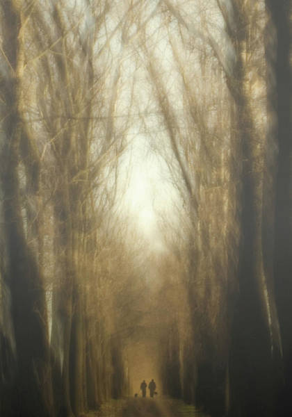 Wall Art - Photograph - Dream Lane by Yvette Depaepe
