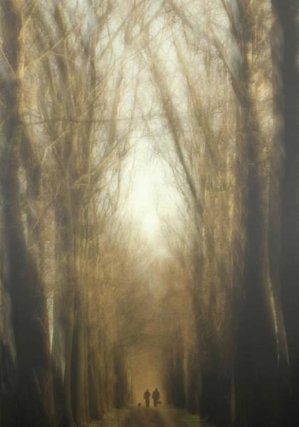 Walk Wall Art - Photograph - Dream Lane by Yvette Depaepe