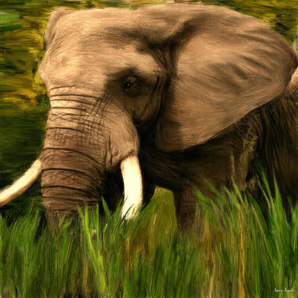 African Bush Elephant Photograph - Dream Of Me by Lourry Legarde