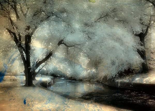 Dreamy Trees By The Stream Art Print