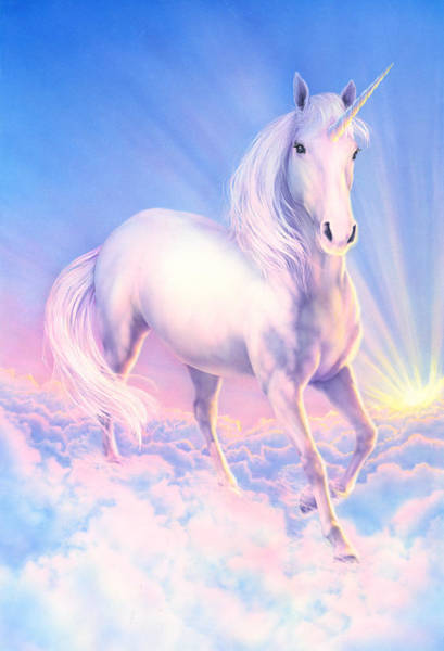 Andrew Farley Photograph - Dream Unicorn by MGL Meiklejohn Graphics Licensing
