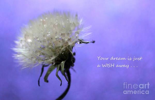 Saying Photograph - Dream Wish by Krissy Katsimbras