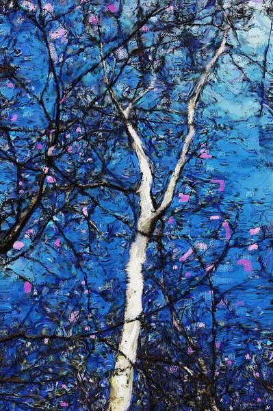 Wall Art - Digital Art - Dreaming Of Spring by David Lane