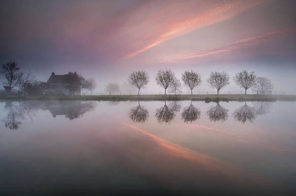 Fog Photograph - Dreamland by Susanne Landolt