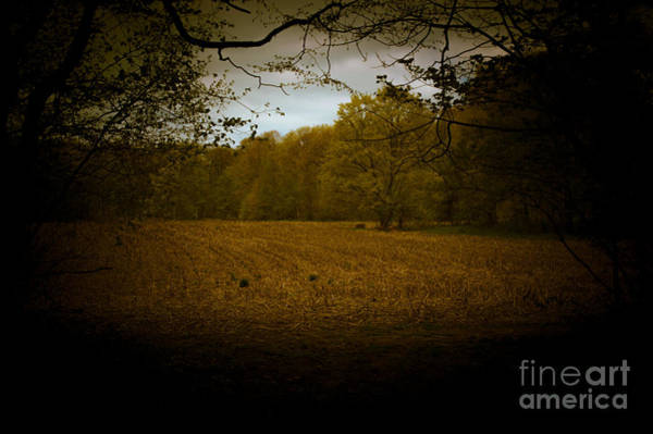 Photograph - Dreamscapes - Harvest Field 2 by Kathi Shotwell