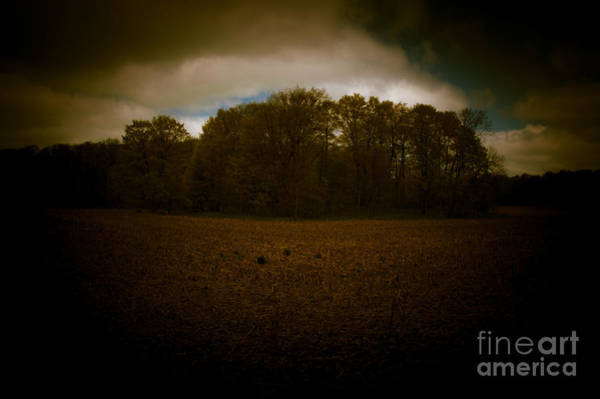 Photograph - Dreamscapes - Harvest Field by Kathi Shotwell