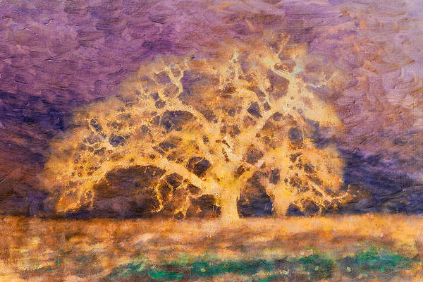 Mixed Media - Dreamtime Oak Tree Art by Priya Ghose