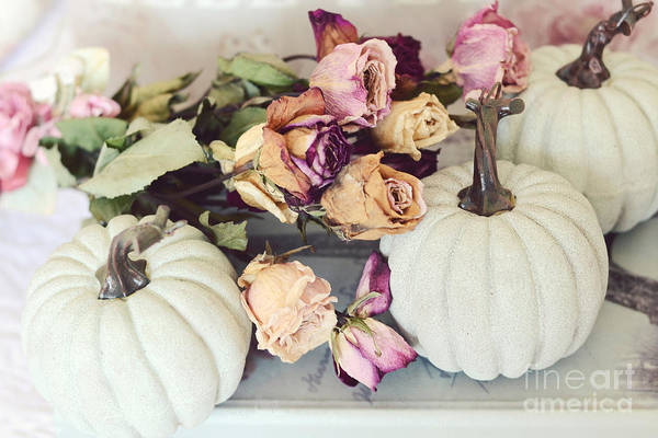 Wall Art - Photograph - Dreamy Shabby Chic Cottage Autumn Fall Pastel Pumpkins And Dried Roses by Kathy Fornal
