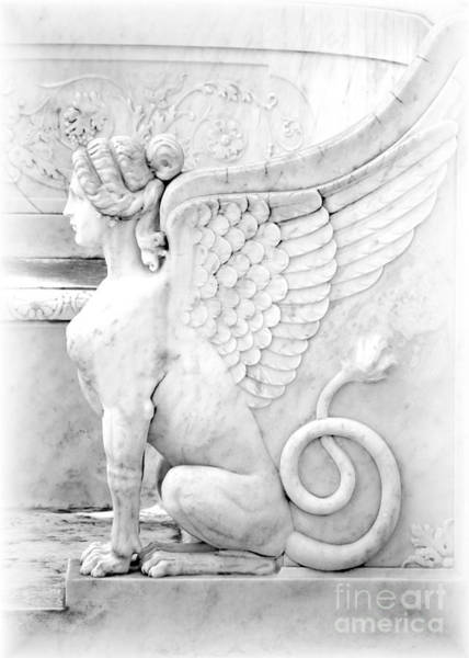 Photograph - Dreamy Sphinx by Sabrina L Ryan