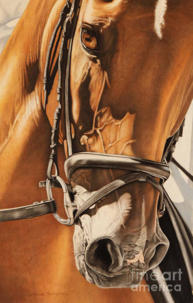 Dressage Wall Art - Pastel - Dressage And Details by Joni Beinborn