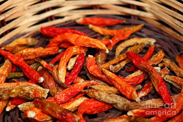 Photograph - Dried Capsicum Annuum Chilis by James Brunker