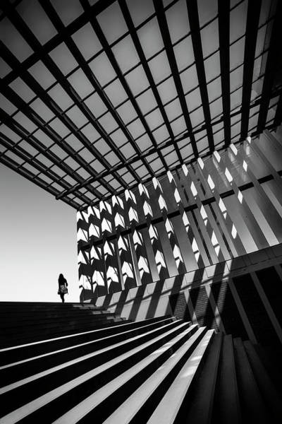 Ceiling Photograph - Drifting by Paulo Abrantes