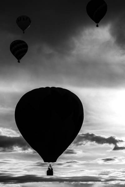 Photograph - Drifting Silhouette by Colleen Coccia