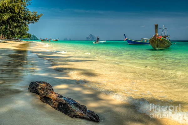 Thailand Photograph - Driftwood by Adrian Evans
