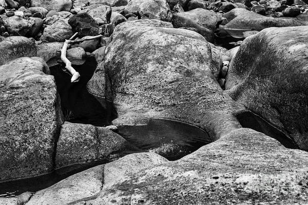 Photograph - Driftwood And Rock by Thomas R Fletcher