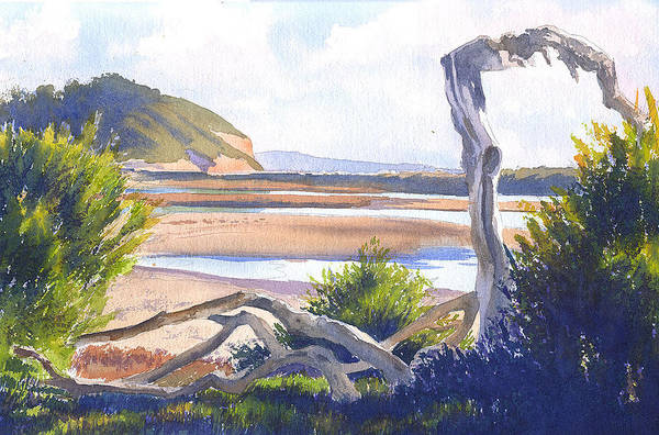 Driftwood Painting - Driftwood At Torrey Pines by Mary Helmreich