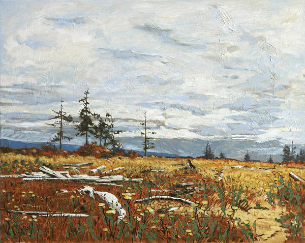 Painting - Driftwood Meadow by Rob Owen