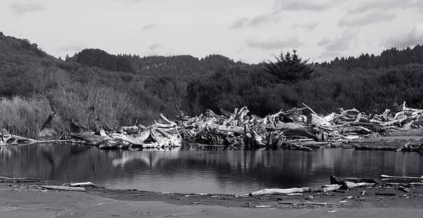 Photograph - Driftwood Pond by Lorraine Devon Wilke