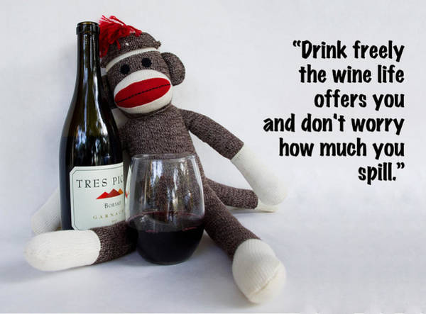 Sock Monkey Photograph - Drink Freely by William Patrick