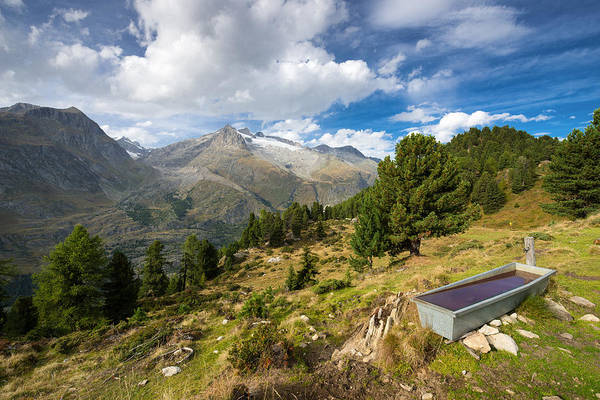 Photograph - Drinking Trough In The Swiss Mountains by Matthias Hauser